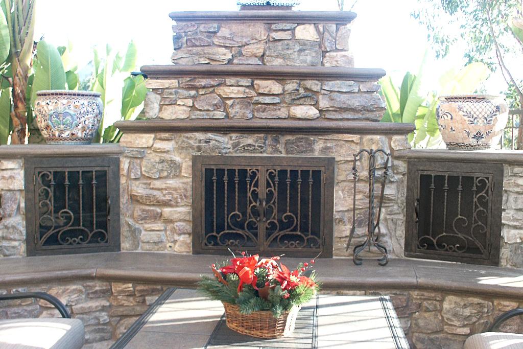 Arcadia Fireplace Door