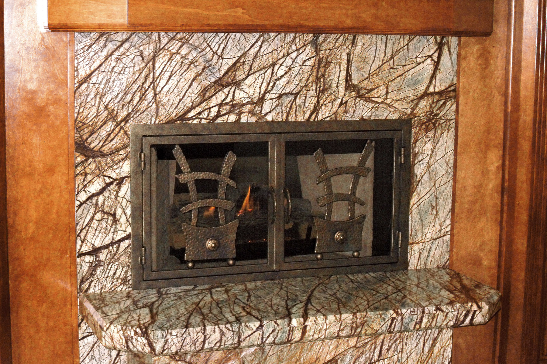Atwater Fireplace Door