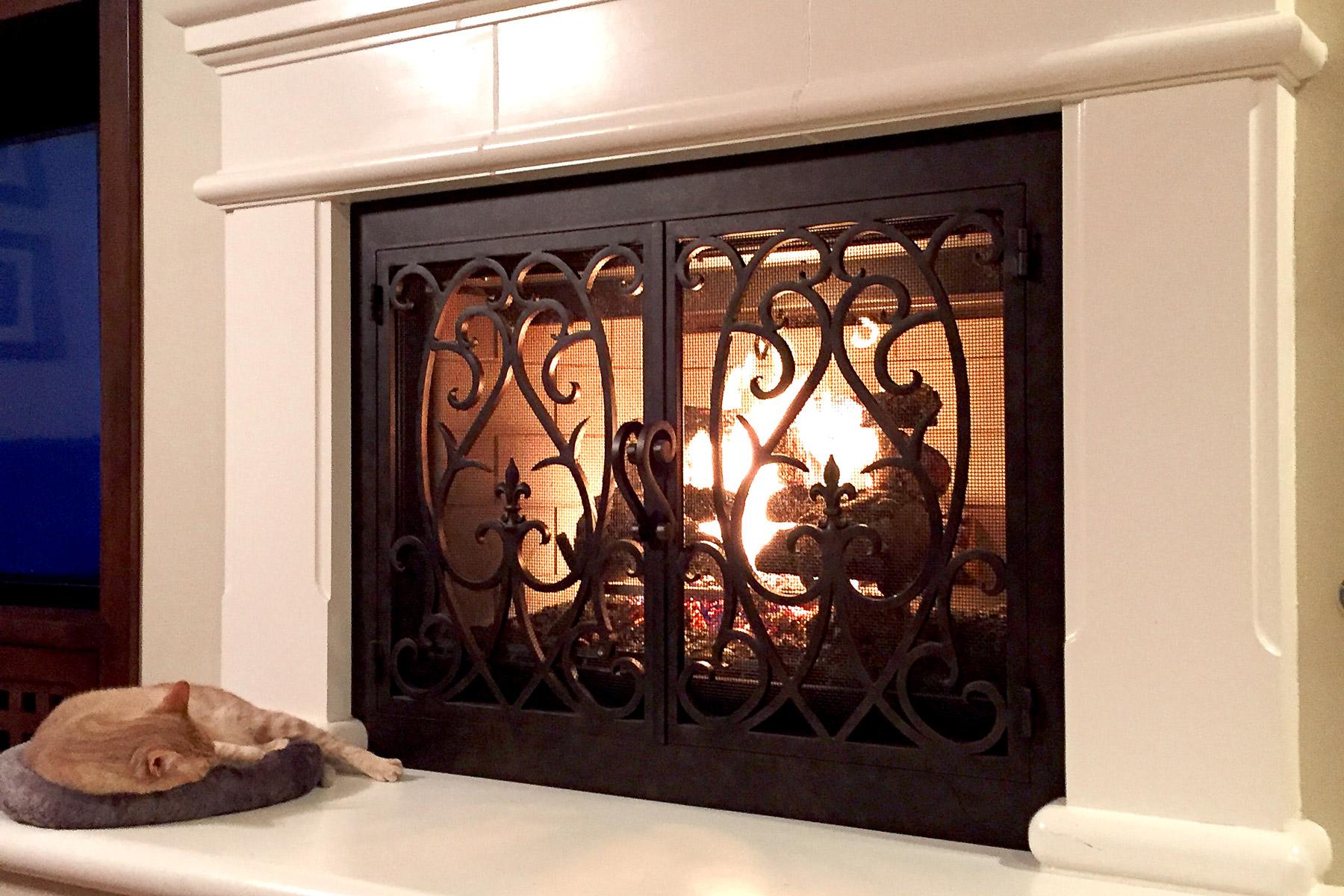 Dawas 41 Fireplace Door