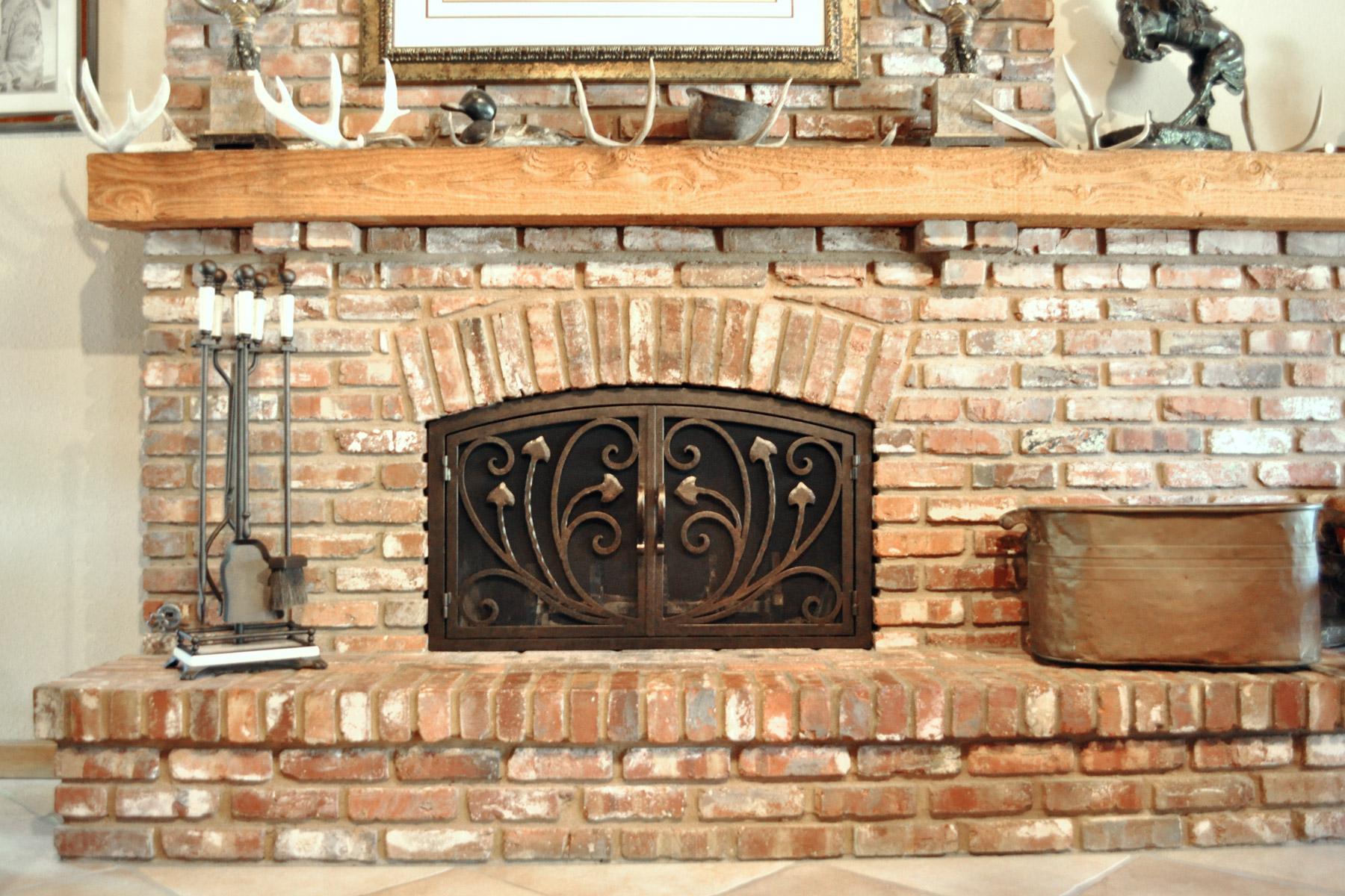 Montclair Fireplace Door