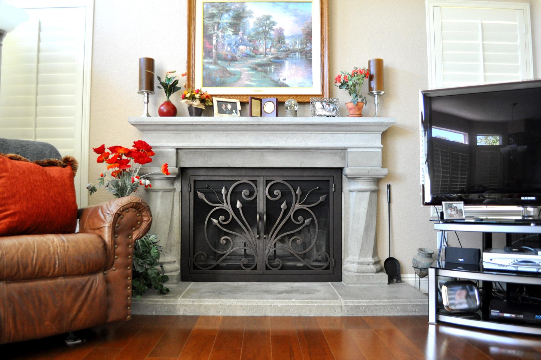 Orchid 4 Fireplace Door
