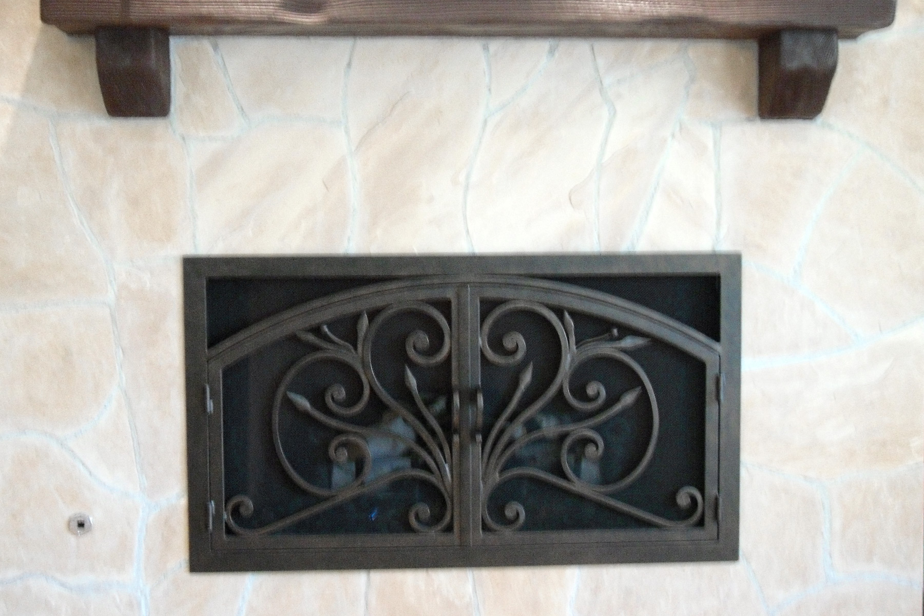 Orchid 4 Arch Rectangular Fireplace Door