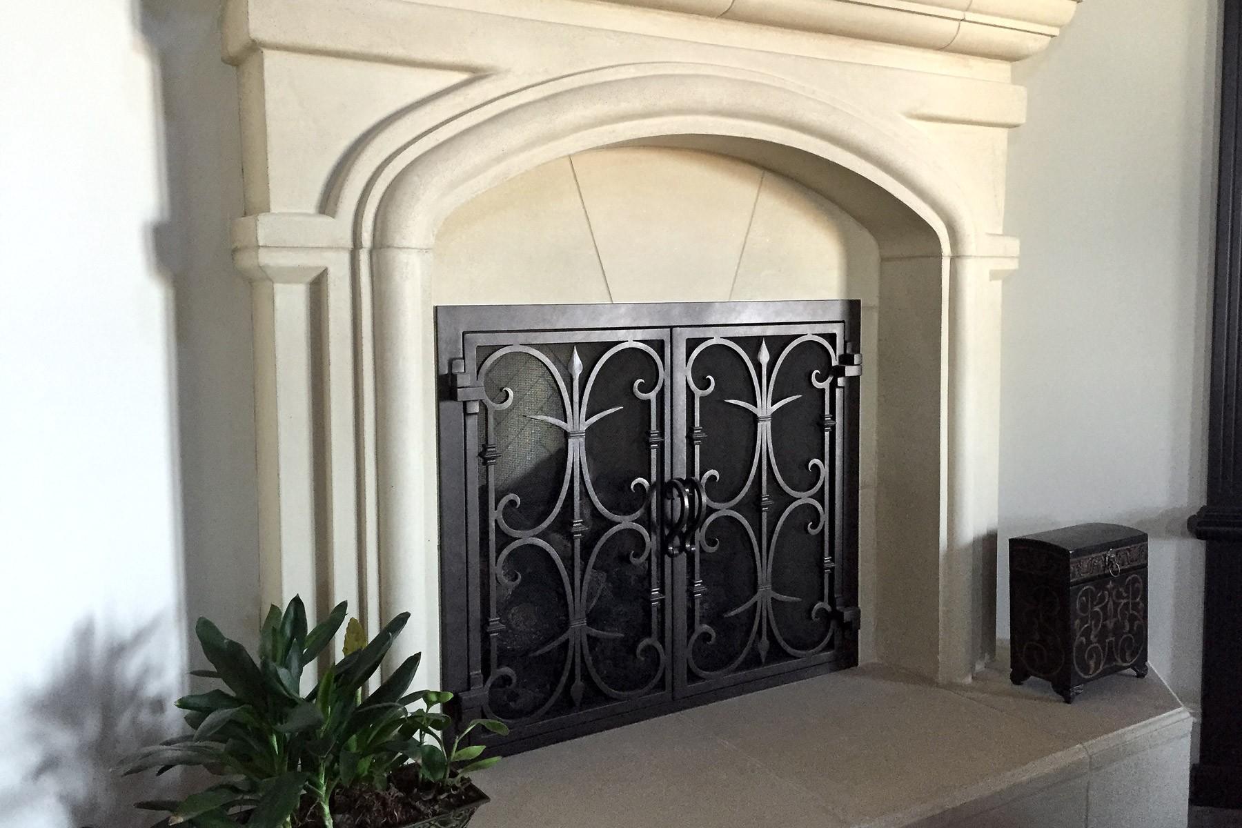 Rancho Santa Fe 9 Fireplace Door