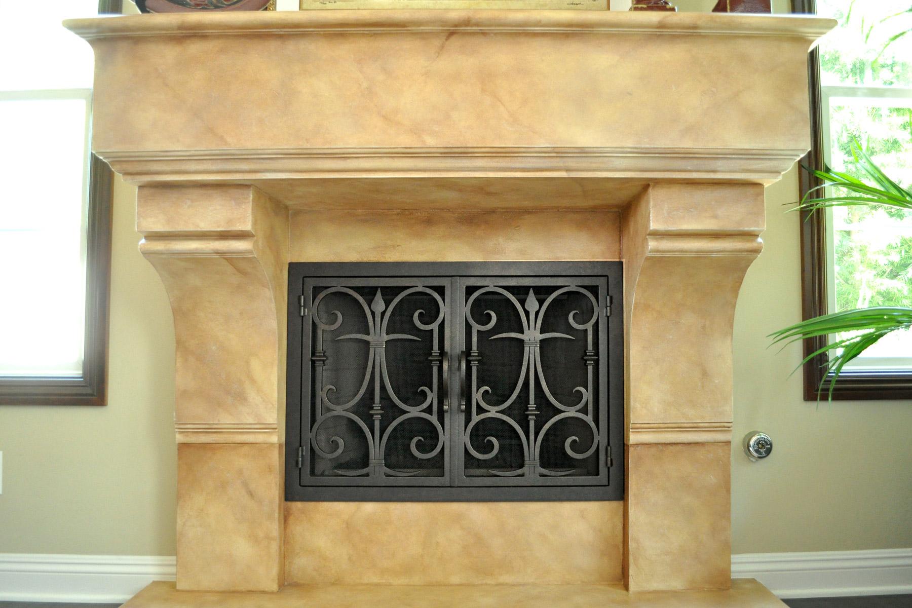 Triton 8 Fireplace Door