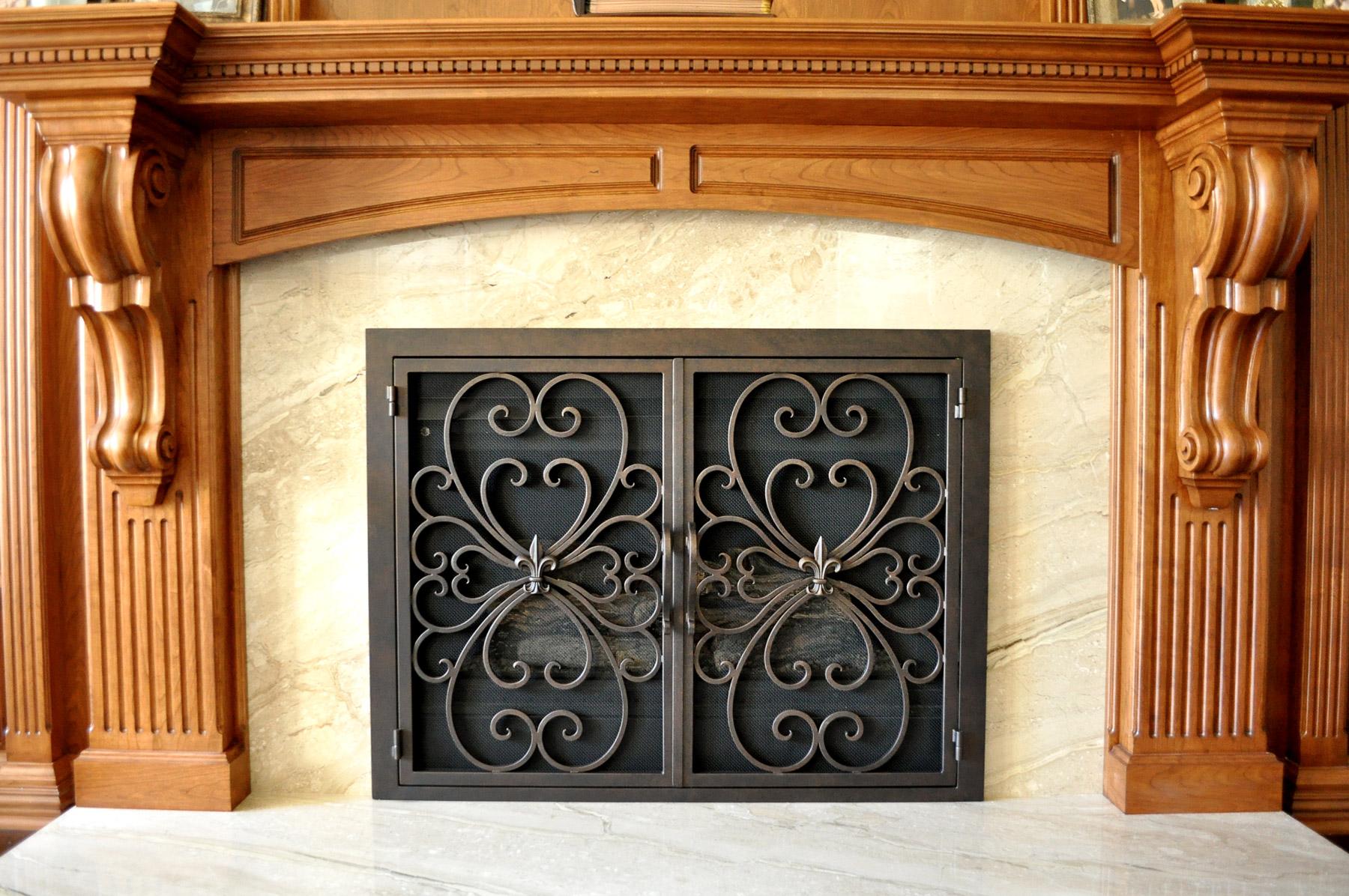Valencia 2 Fireplace Door